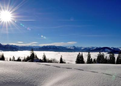 winterlandschaft-im-brixental©kitzbueheleralpen-brixental